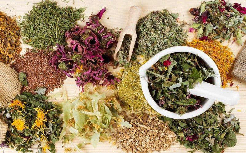 Травяные сборы от бессоницы